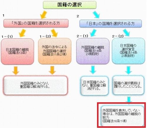 国籍の選択宣言の説明図