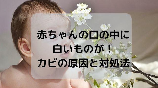 赤ちゃんの口の中に白いものが!カビの原因と対処法