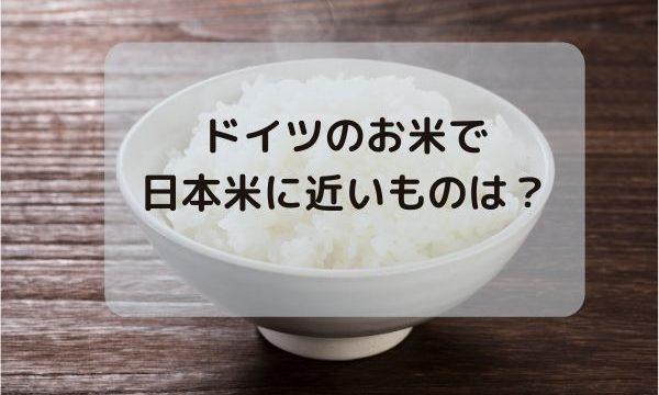 ドイツのお米で一番日本米に近いものは?